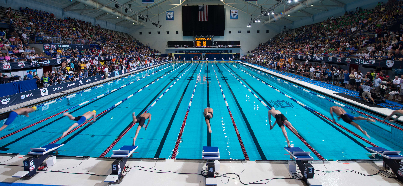 Championship Season Swimming