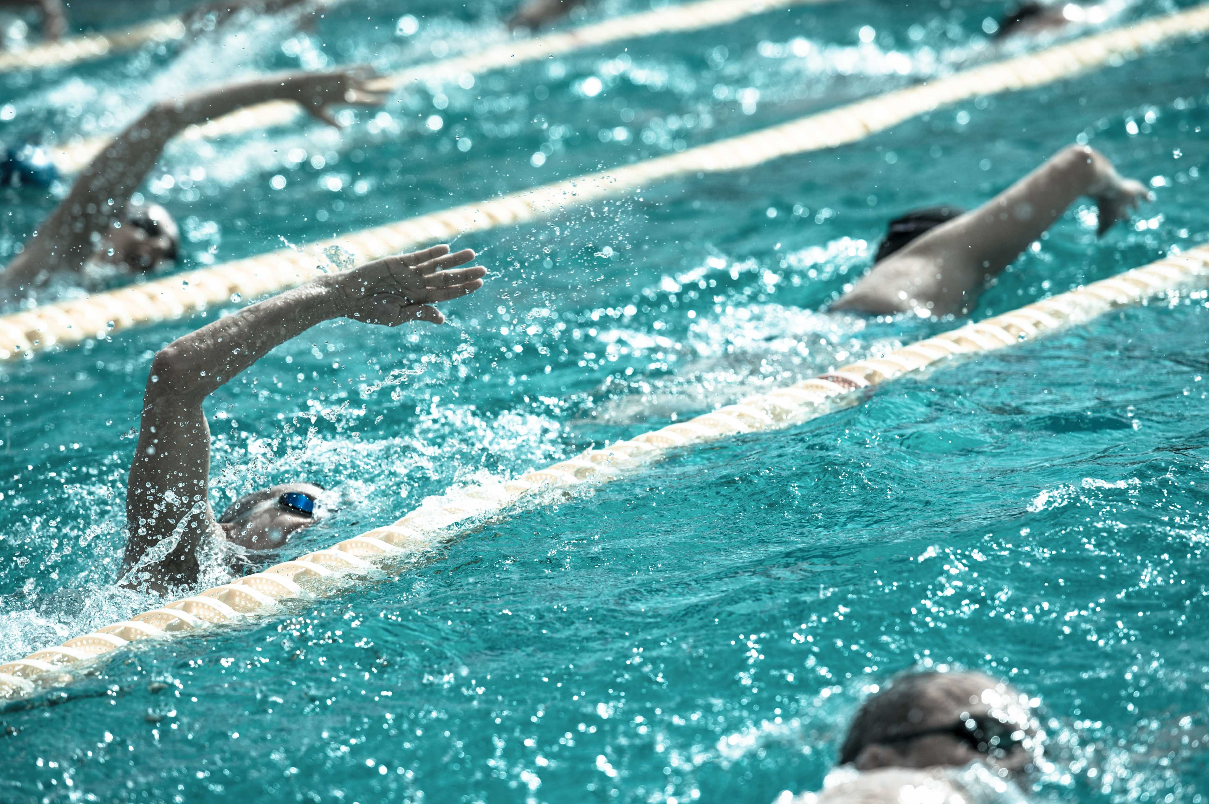 Importance of Dryland Training for Swimming