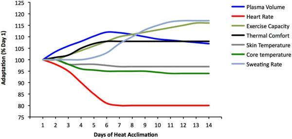 Figure 2: Heat Adaptation Curves