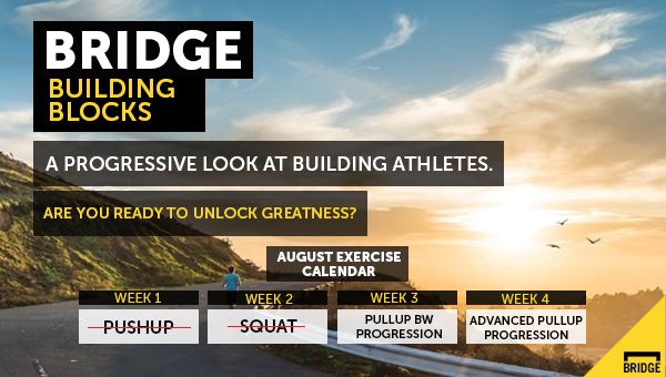 newsletter_photo_week_2